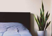 Szukasz anonimowego i luksusowego miejsca do wypoczynku? Wybierz apartament na dobę o wysokim standardzie!